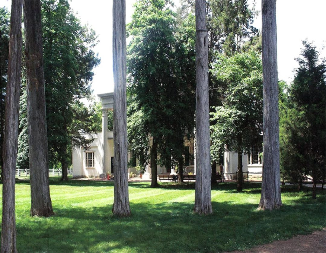 Carriage Drive Cedars #26