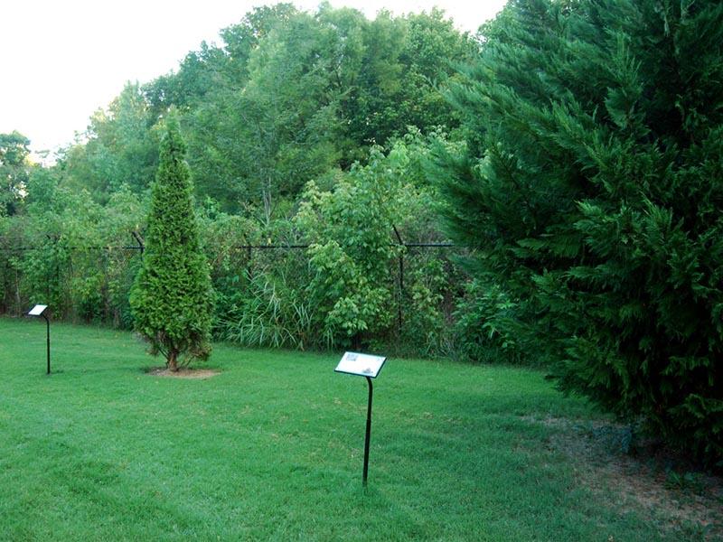 Cleveland/Bradley County Greenway
