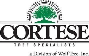 Cortese Tree Specialists