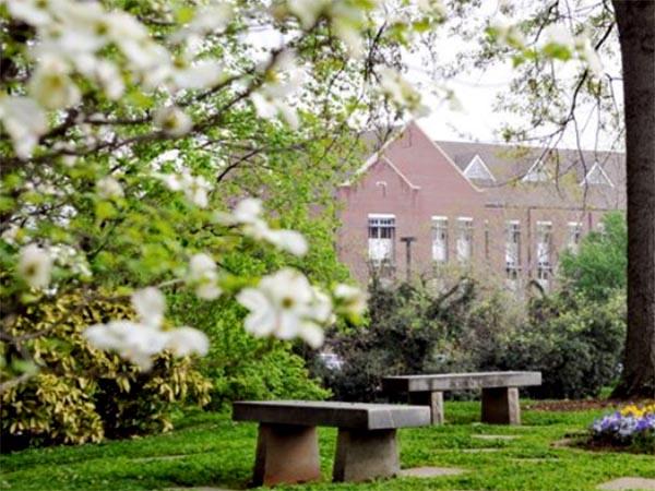 Linda T. Collins Memorial