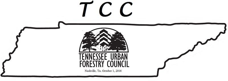 TUFC TCC