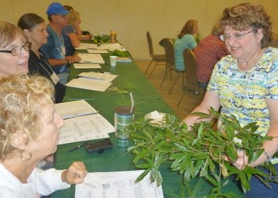 Urban Forestry Advisor Class, Memphis