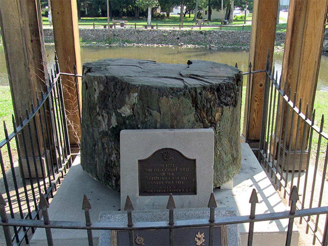 Watauga Treaty Sycamore