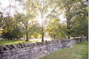 Belle Meade Plantation Arboretum