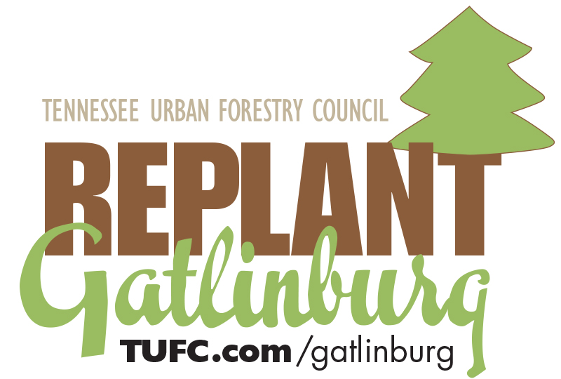 Replant Gatlinburg